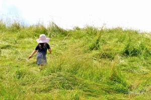 Wurzeln und Flügel - der Grundstein einer Kindheit