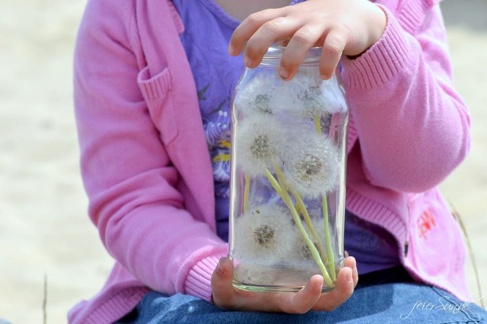 Pusteblumen Make a wish - Pusteblumen im Glas - ein Glas voller Wünsche gepflückt von Kinderhänden