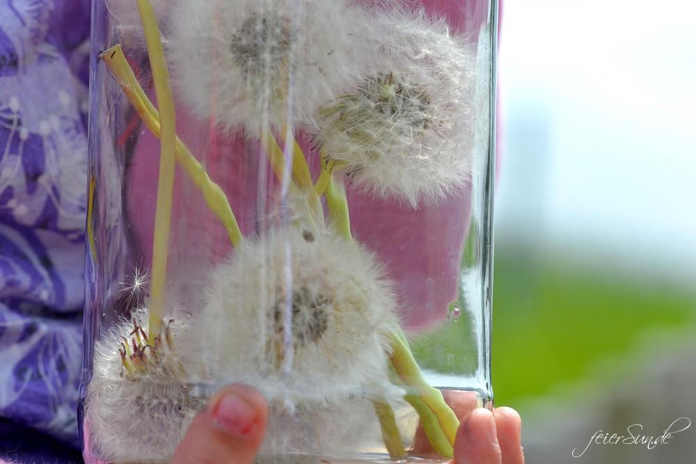Wunsch für Mama - Give a wish: Motte wünscht sich eine gesunde Mama