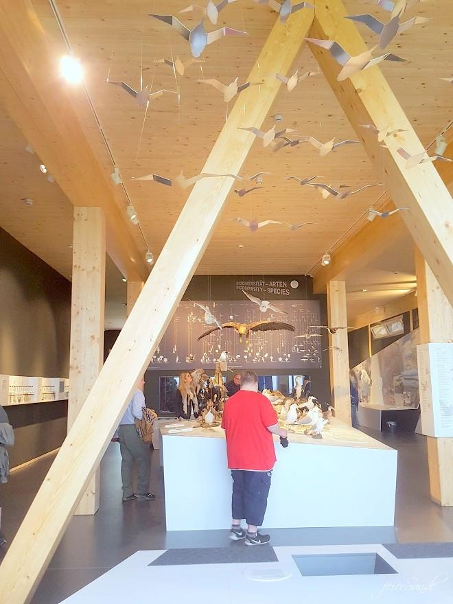 mein Wattenmeer cuxhaven unser Ausflug in das Besucherzentrum das Unesco Weltnaturerbe vor dem Eingang - das Gebäude was lebte hier - nicht nur Tiere aus dem Watt - Wissen für jung und alt der Artentisch