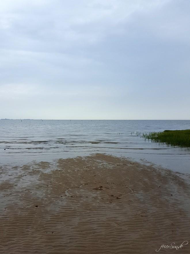 mein Wattenmeer cuxhaven unser Ausflug in das Besucherzentrum das Unesco Weltnaturerbe vor dem Eingang - das Gebäude was lebte hier - nicht nur Tiere aus dem Watt - da war das Wasser wieder