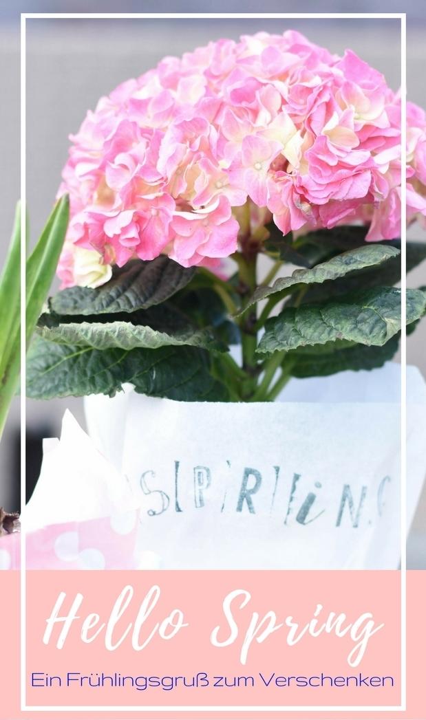 Hello Spring, bitte bleib doch jetzt. Und damit wir den Frühling auch verschenken könne, basteln wir uns einen wunderbaren Frühlingsgruß. #DiY #Frühling #Spring