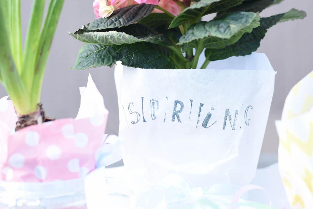 TITEL_Hello-Spring_ein-Fruehlingsgruß-zum-verschenken_denn-den-Fruhling-brauchen-wir-alle