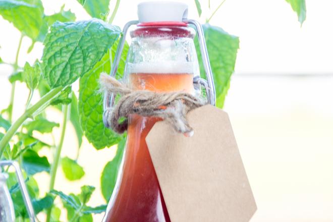 Ein fruchtig-süß-herber Drink in der Hand und schon fühlt es sich nach Sommer an. Rhabarber-Schorle scheint das Sommer-Getränk des Jahres zu sein, aber wir machen den Rhabarbersirup lieber selber. Mein Rezept für schnellen & einfachen Rhabarbersirup.